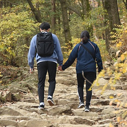 Man and Woman holding hands walking up a Rocky path in the woods